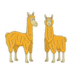 set llamas vector image