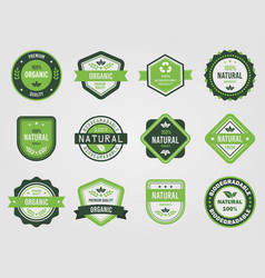 variety healthy food emblems vector image
