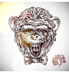 sketch portret of monkey vector image