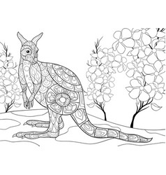 adult coloring bookpage a cute kangaroo image vector image