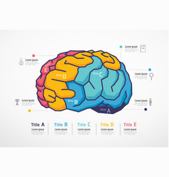 Brain resources infographic business education vector