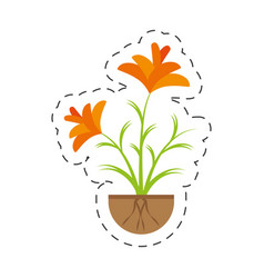 Freesia flower growing garden vector