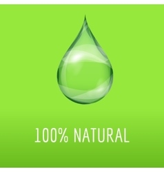 Green natural template with a water drop vector