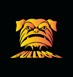 head bulldog vector image