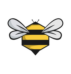 honeycomb bee icon vector image