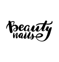 lettering beauty nails vector image