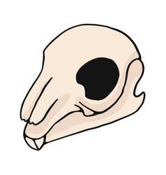 rabbit skull cartoon motif set vector image