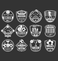 Soccer sport badges football league club icons vector
