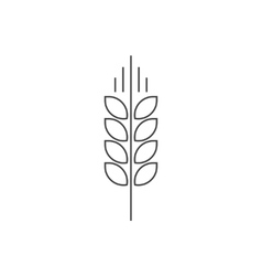 Wheat spike logo grain ear icon organic vector image