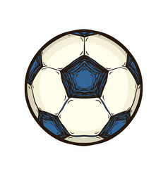 soccer ball isolated hand drawn sport equipment vector image