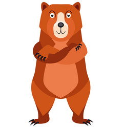 cartoon bear character vector image