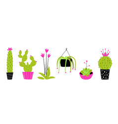 Decorative potted cactus set flat hand drawn vector