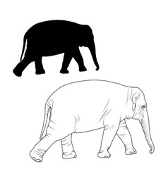 Elephant adult animal isolated sketch silhouette vector