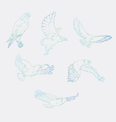Hand-drawn pencil graphics birds prey set vector