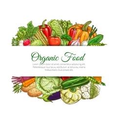 Organic food vegetables harvest poster vector image vector image