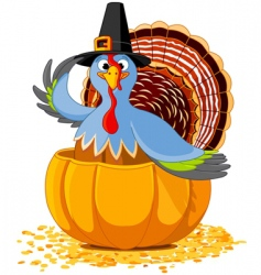 thanksgiving turkey in pumpkin vector image