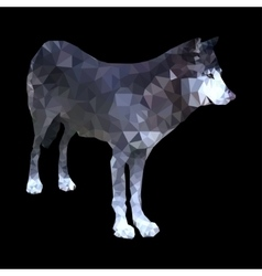low poly wolf vector image