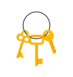 Keys hanging on key ring vector image vector image