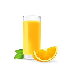 glass of orange juice and a slice of orange vector image