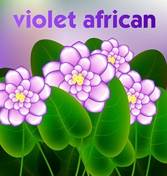 Spring background with blossom brunch of african vector