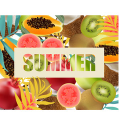 summer fruits avocado papaya kiwi pomegranate vector image vector image