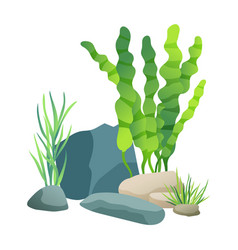 vegetation green plants set vector image