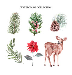 Watercolor winter decoration on white background vector
