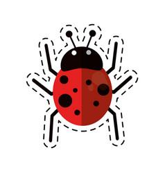 cartoon ladybug fly antenna animal vector image vector image