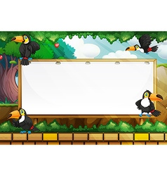 Frame template with toucans flying vector image vector image