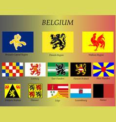 all flags belgium regions vector image