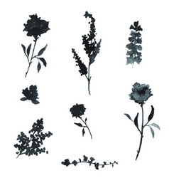 black watercolor floral elements vector image