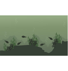 Fish on the underwater landscape vector