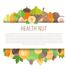 frame with nuts vector image