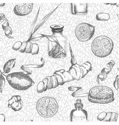Seamless pattern hand drawn ginger roots lemon vector