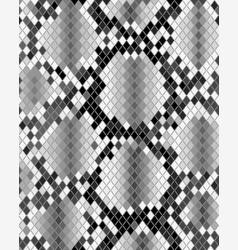 Skin of snake vector