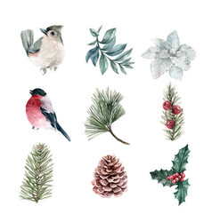 Watercolor winter decoration on background vector