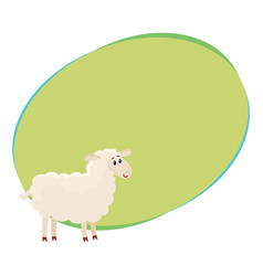 well gromed fluffy sheep lamb with big eyes vector image vector image