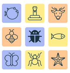 Animal icons set includes icons such as beetle vector