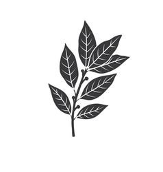 Bay leaf glyph icon vector