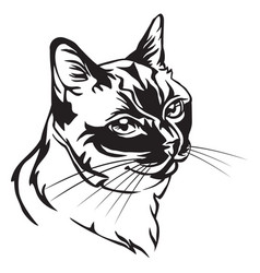 Decorative portrait of thai cat vector