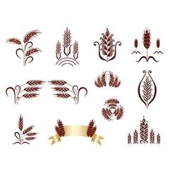 grain ears vector image