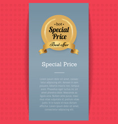 Special price and best offer vector