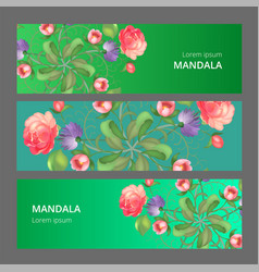 banner set with floral ornament rose vector image