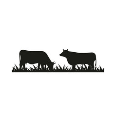 cattle silhouette graphic design template vector image