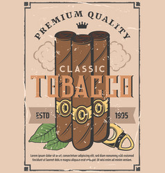 Cigars production and tobacco factory shop vector