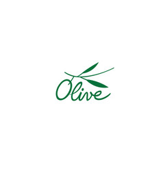 creative olive leaves text symbol logo vector image