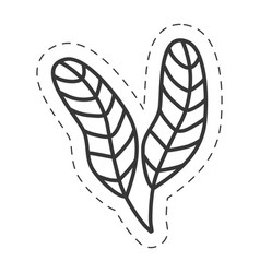 feathers ornament decoration thin line vector image