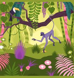 jungle landscape background vector image
