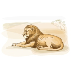 Lion watercolor style vector