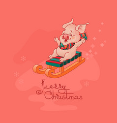 Merry christmas card cute pig on sled vector